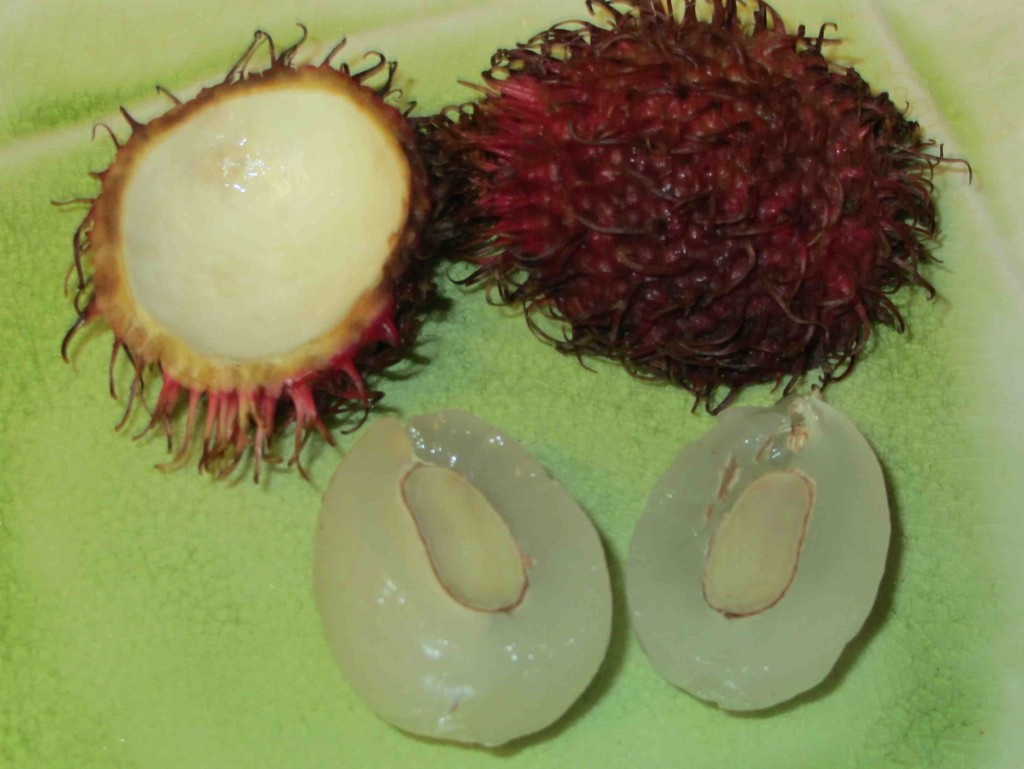 rambutan-thai-fruit